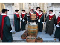 Vendanges au Château Pau
